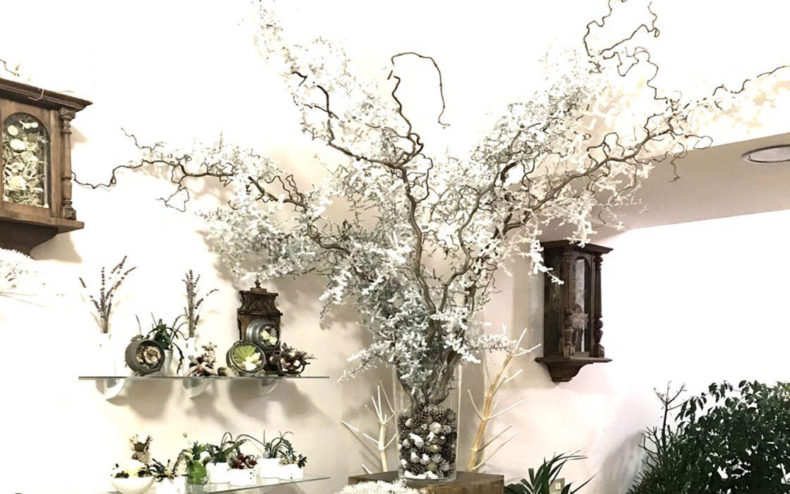 ramo con neve