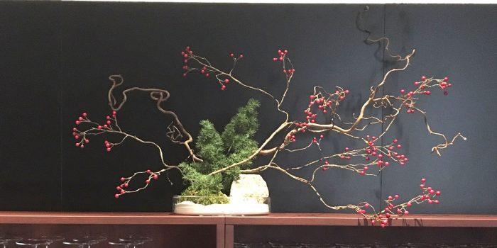 ramo con bacche