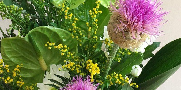 30 Giu 2020 bouquet del giorno